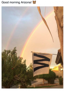 cubs-win-it-all